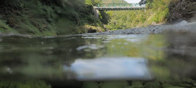 Pelorus Bridge – spoiled paradise